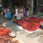 INDIA-APRIL-2011-0701-1024x768
