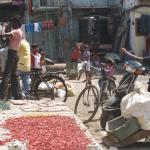 INDIA-APRIL-2011-4441-768x1024
